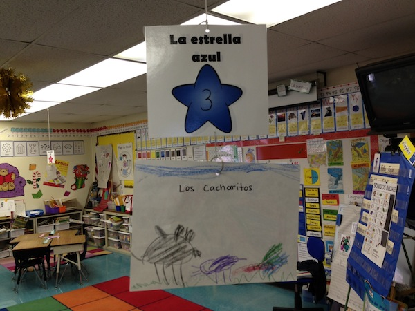 Volunteering in a dual immersion classroom