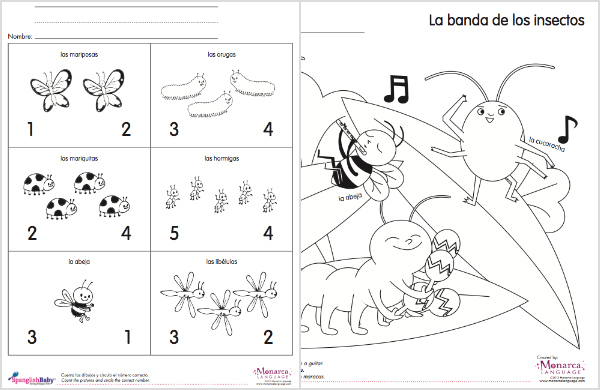 Spanish Coloring and Activity Sheet - Insects