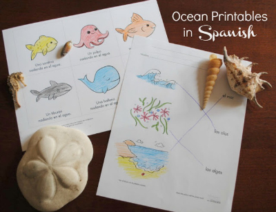 Free beach themed printables in Spanish - MommyMaestra