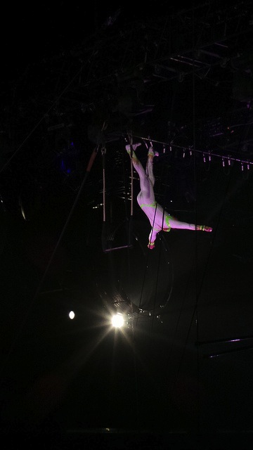 ringling bros flying