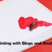 painting with snails