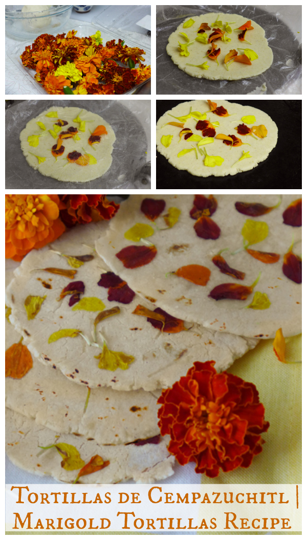 Tortillas de Cempazuchitl | Marigold Tortillas {Recipe} - SpanglishBaby.com