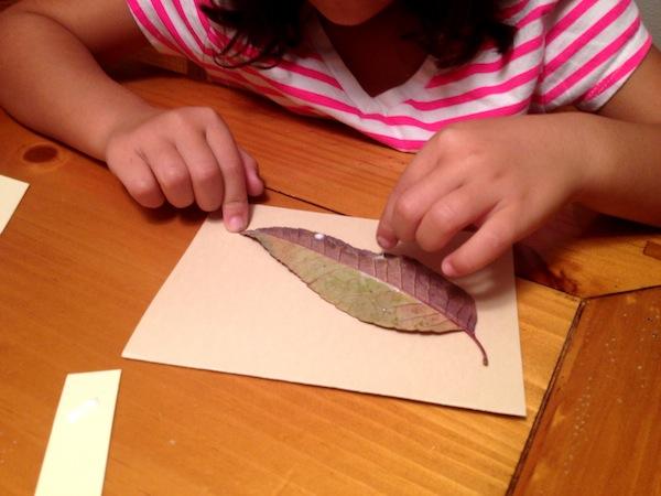 Fall Craft: Easy DIY Gratitude Cards in Spanish